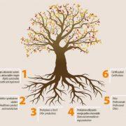 bioediliza